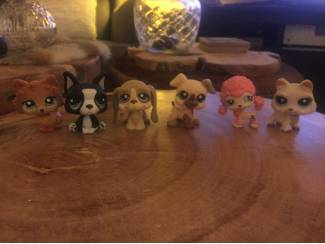 42 zeldzame littlest pet shop